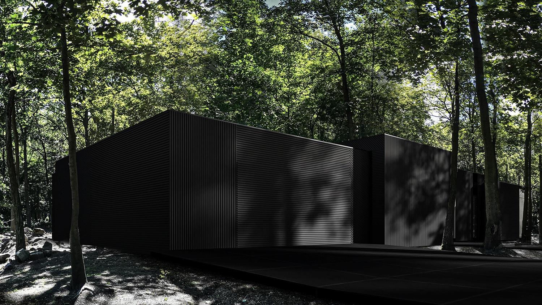 RE: DARK HOUSE projektu architekta Marcina Tomaszewskiego REFORM Architekt